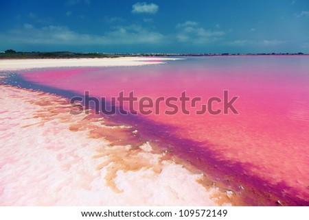 The salty shore of the Laguna Salada de Torrevieja.Spain.  The water looks pink due to a special algae that grows in high levels of salt.