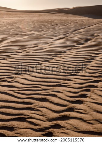 The sand dunes of Pismo Beach, California Zdjęcia stock ©