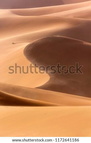The sand dunes of the Sahara #1172641186