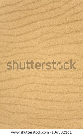 The sand scattering  on white background