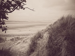 The Sandscale Haws national nature reserve sand dune landscape and Duddon Estuary in sepia