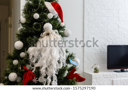 The Santa Claus costume with beards hangs on the spruce. Santa's beard hanging on a Christmas tree