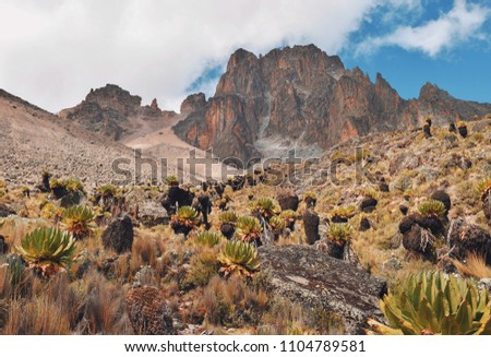 The scenic peaks of Mount Kenya, Mount Kenya National Park  #1104789581