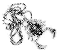 The scorpion pendant and necklace - Stainless Steel - White background