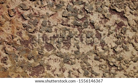 The scratched surface of the rusted metal plate and the grime that looks like a military pattern. #1556146367