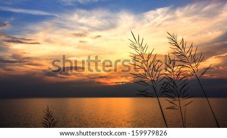 The sea on sunset time is beautiful time
