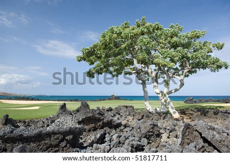 The sea side green of a golf course on the Big Island of Hawaii with volcanic lava in the foreground and Pacific ocean in the background.