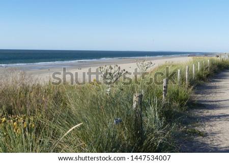 the seaside of a seaside resort of Zeeland in Holland #1447534007
