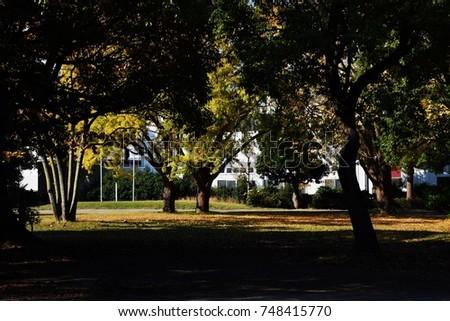 The season of autumn leaves #748415770