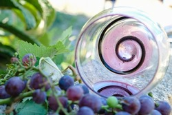 The sediment of red wine is at the bottom of the glass. The glass is decorated with a spiral. An overturned glass and a bunch of grapes.