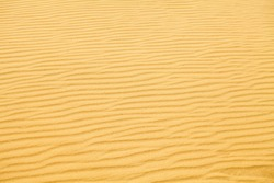 The send of the Desert. Sahara send texture. Thousand kilometers of row of sand dunes, barkhan belt and fixed by special plants sands, pebbly upland sand plots, thorny bushes. Send storm