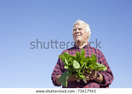 The senior man holding vegetable looking into far end with smile.