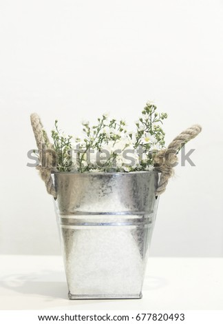 the series art of beautiful flower in utensil ware on white background #677820493