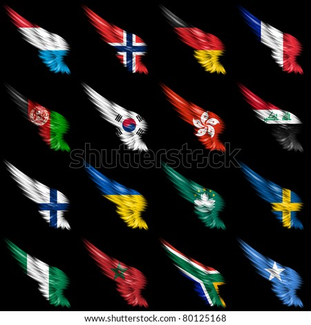The Set of european, african and american flags on wings