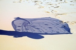 The shadow of a woman waving a shawl on the sandy beach