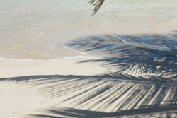 The shadow of palm leaves from a palm tree on a white sand beach near the tide, in Culebra, Puerto RIco