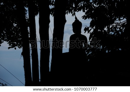 the shadow of the Buddha   #1070003777