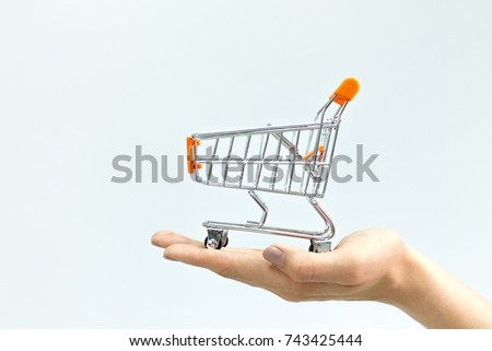 The shopping cart in female hands isolated #743425444