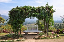 The Shot of Garden Arch