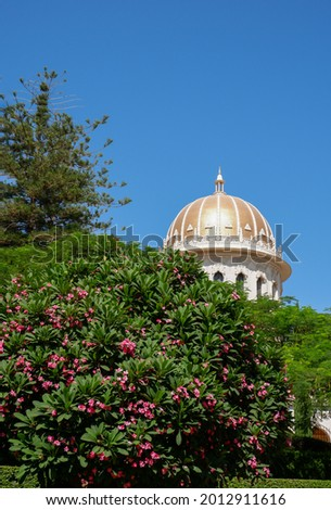 The Shrine of the Báb behind frangipani tree at Bahai Gardens on Mount Carmel in Haifa, Israel Stock fotó ©