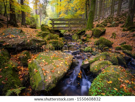The 'Silberbachtal' in Autumn in the 'Teutoburger Wald', Horn-Bad Meinberg, Detmold, Germany Stock foto ©