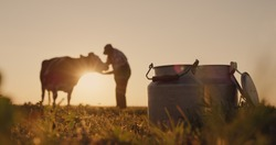 The silhouette of a farmer, stands near a cow. Milk cans in the foreground