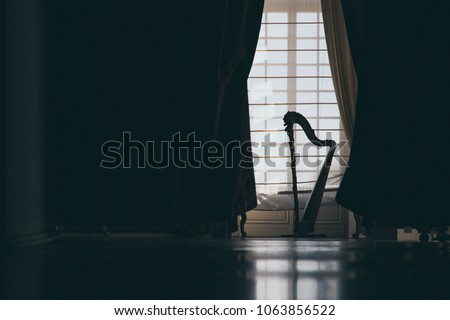 The silhouette of a harp in a salon in front of a door with white curtains creates a spectacular play of light that can surprise you #1063856522