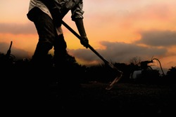 The silhouette of the workers shoveling the soil with a spade in the evening.