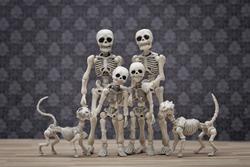 The skeletons family portrait