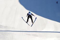 The Ski Jumping
