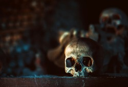 the skull in beautiful lighting against the backdrop of a mountain of bones is ideal for occultism, magic, lovers of gloomy aesthetics