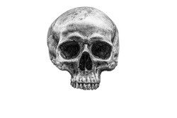 The skull is a symbol of horror and death. In the cemetery. white and black. clipping path