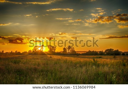 The sky and sunset with the field on which the grass grows #1136069984