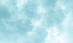 The sky is dark blue, it is like rain will soon fall.