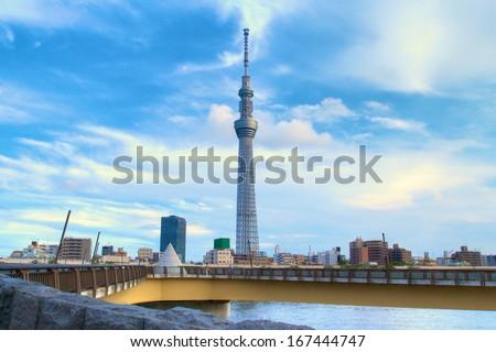 The Sky Tree was shot at a summer night, Tokyo, Japan.