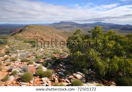 The slope of Mount Sonder, in the West MacDonnell national park in central Australia.