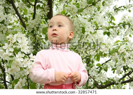 The small child against a blossoming apple-tree - stock photo