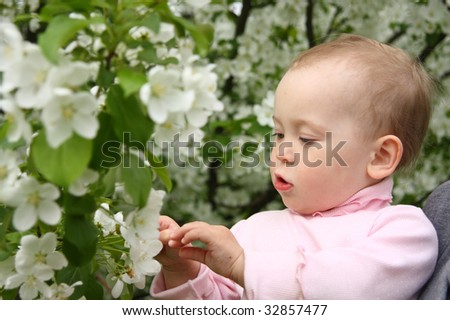 The small child plays with an apple-tree branch