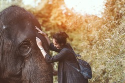 The smiling girl embraces an elephant,Friendship between elephants and people.