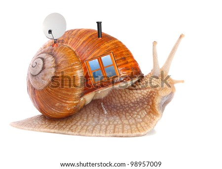 The snail with his mobil home. Easy housing metaphor. Real estate business concept.