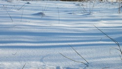 The snow surface. Grass under a thick layer of snow.