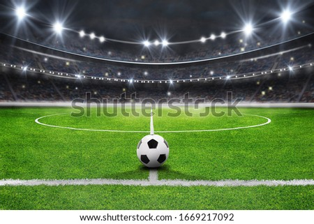 The soccer stadium with the ball on the line