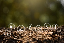 The soil is fertile and shines with the iconic technology for soil degradation.