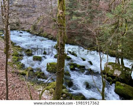 The source of the Orbe River (Source de l'Orbe, Quelle der Orbe Fluss oder die Quelle des Flusses Orbes), Vallorbe - Canton of Vaud, Switzerland (Kanton Waadt, Schweiz)