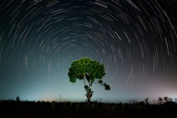 The star revolve around a green tree