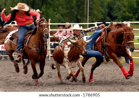 The Steer Wrestling event at the Help A Child Smile rodeo, Sept. 3/2006 in Welland, Ont.