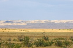 The steppe is woodless, poor in moisture and usually flat with grassy vegetation in the dry climate zone. prairie, veld, veldt