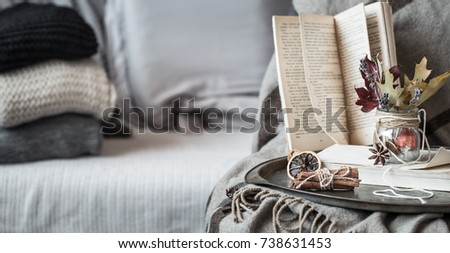 The still life details in the living room. Autumn composition on the background of cozy sofas and sweaters, the concept of leisure and autumn weekends #738631453