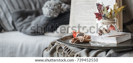 The still life details in the living room. Autumn composition on the background of cozy sofas and sweaters, the concept of leisure and autumn weekends #739452550