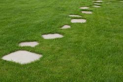 The Stone block walk path in the backyard